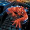 spider man's Photo