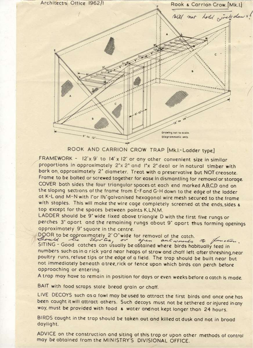 ladder trap plans