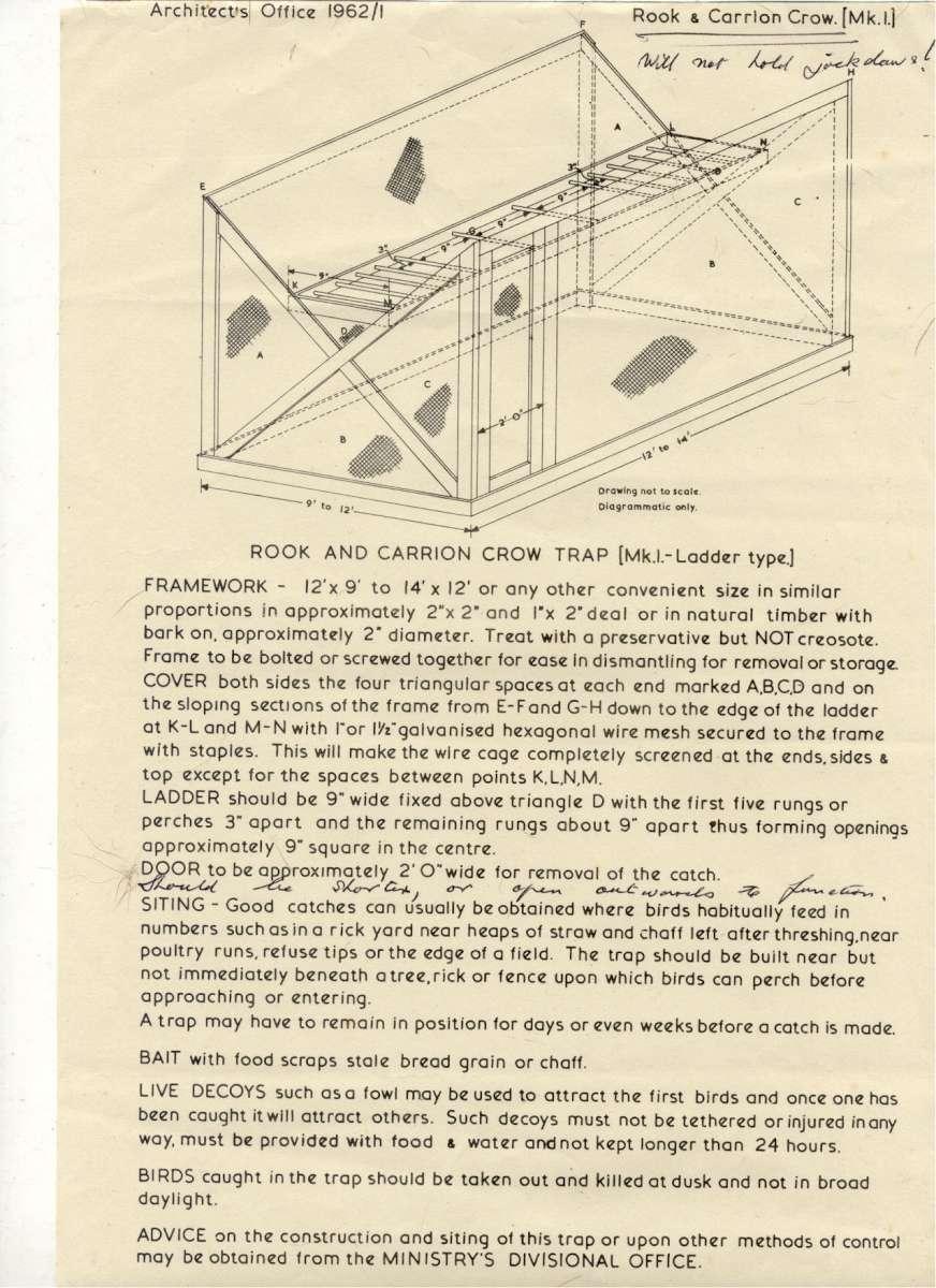 ladder trap.jpg