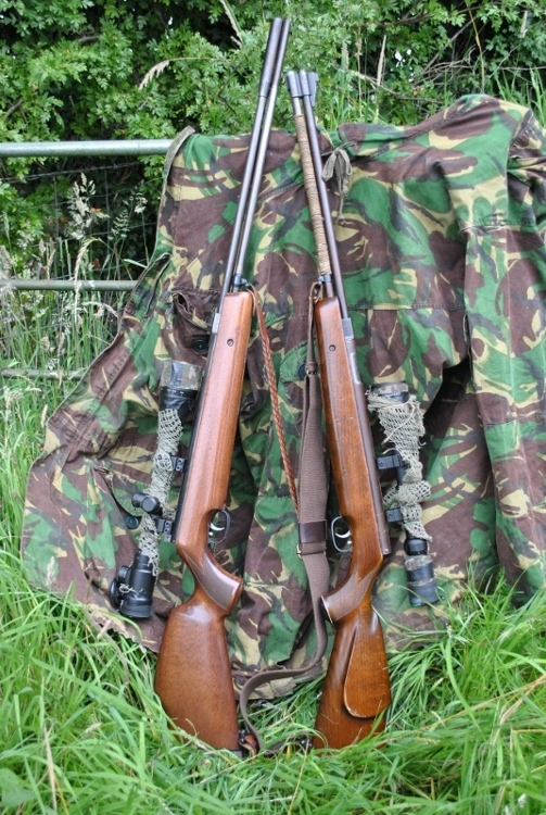 best air rifle for hunting - Airgunners - Pigeon Watch Forums