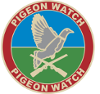 Pigeon Watch Forums