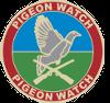 Pigeon Watch Forums