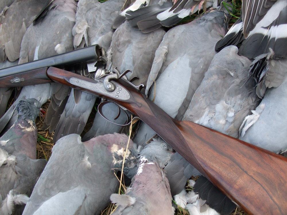 Horsley pigeons 006.JPG