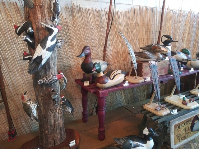 Wood Peckers.jpg