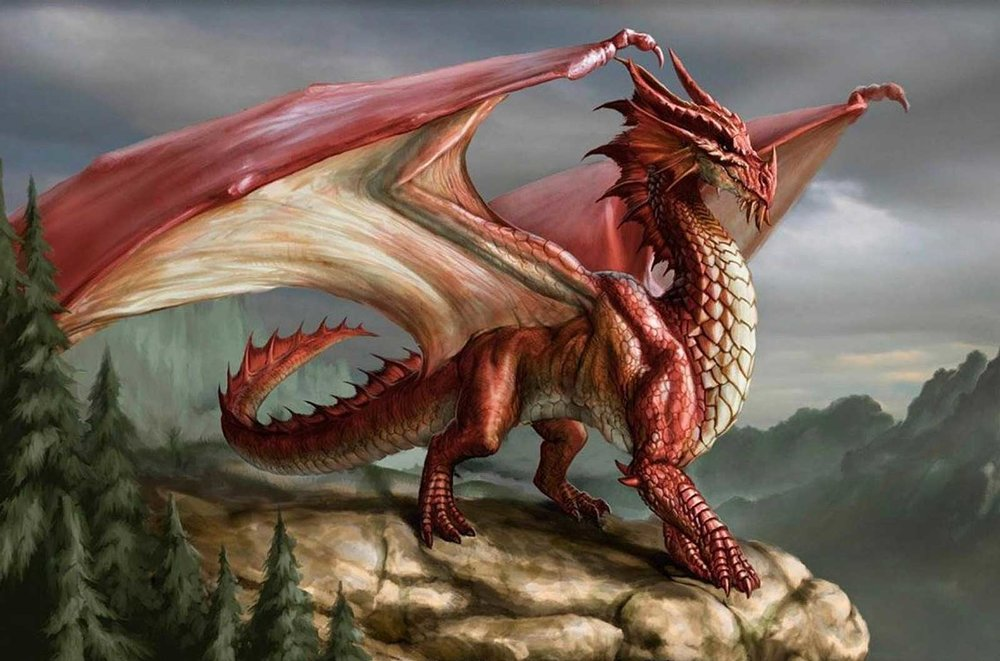 Welsh-Dragon-FEAT.jpg