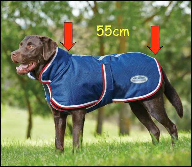 dog coat 55cm.png