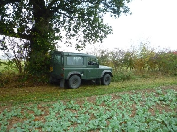 landy cammo net 006tn_.JPG