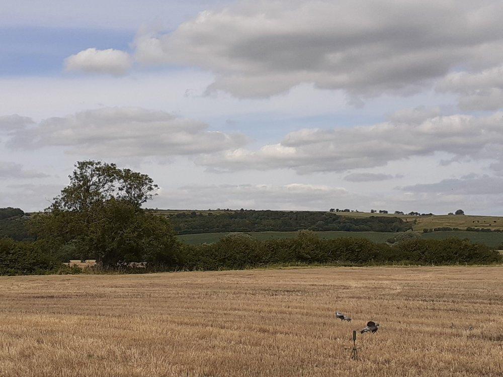 Walesby 1.jpg