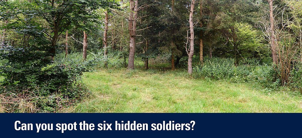 4792C29D00000578-5213127-The_Household_Cavalry_posted_this_picture_of_six_snipers_nestled-m-41_1514327328713.jpg.8a64f26fc7ec155c607cd0ee5aa26ca2.jpg