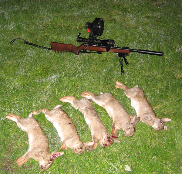 Shooting Rabbits In Colorado: Few Rabbits Shot With Anschutz XIV Carbine